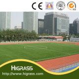 専門の小型フットボールのサッカー競技場の人工的な草