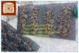 カキによって育てられる袋、カキは50X100cmをおりに入れる