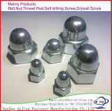 Болты с шестигранной головкой куполообразную крышку гайки купол гайку/DIN1587