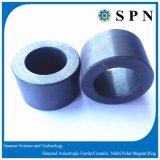 De permanente Ceramische Magneet van /Sintered van de Ring van de Magneet van het Ferriet