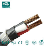 Alimentation 2 de l'usine noyau 10mm2 Câble blindé de LV en polyéthylène réticulé
