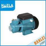 Pompe électrique de l'eau de surface Qb70 pour Moyen-Orient