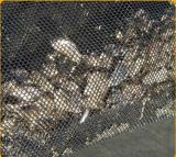900GSMを耕作するシーフードのためのPEのカキの網袋の頑丈な袋