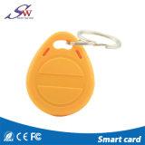 ABS de encargo Keychain del Lf 125kHz RFID de la dimensión de una variable para el control de acceso
