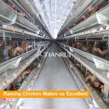 Слой ярусов рамки 3 h конструкции Tianrui автоматический поднимая клетку цыпленка