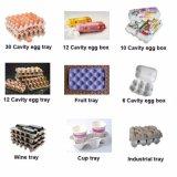 종이상자 계란 쟁반 상자 생산 라인