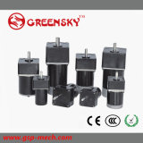 10W 60mm DC motorreductor