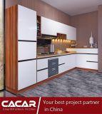 Os gabinetes de cozinha econômicos com painel de madeira