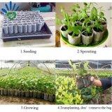 Биологическому разложению и мире биоразлагаемую бутылку для черного цвета с вентиляционными отверстиями из полимера или нетканого материала завод дерево Seedling мини-сумка