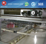 마시고는 및 공급 시스템 (H-4L120)를 가진 자동적인 새 보일러 감금소