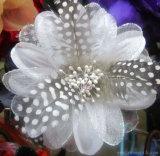نمط يحبك [هندمد] يصبغ [شفّون] [هدور] [مولتيكلور] ريش زهرة زخرفيّة
