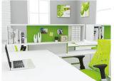 도매를 위한 2017의 새로운 디자인 직원 컴퓨터 워크 스테이션 테이블