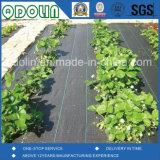 Couvre-tapis de lutte contre les mauvaises herbes, Frontière de sécurité de vase, roulis noir de tissu de pp pour l'agriculture