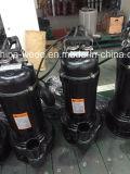 Versenkbare Abwasser-Pumpe, gesundheitliche Pumpe, Wqd Edelstahl 10HP