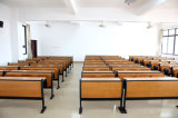 Escritorio del estudiante de los muebles caseros de la escuela y muebles determinados de la silla en sala de clase