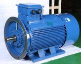 Aluminio Buena condensación de refrigeración Run 132kw Motor eléctrico trifásico