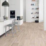 Helle Farbe Belüftung-Bodenbelag für Wohnzimmer