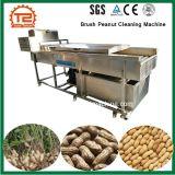 De Schoonmakende Machine van de Pinda van de Borstel van de Wasmachine van de groente & van de Wasmachine van Vruchten