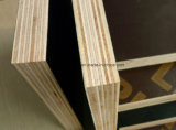 El negro del álamo y la película de Brown hicieron frente a la madera contrachapada Shuttering la madera contrachapada marina