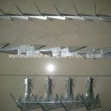 Wand-Spitzen-Stacheldraht-Ineinander greifen des Edelstahl-304