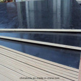 la película de colores de la alta calidad de 18m m hizo frente a la madera contrachapada para la construcción de edificios