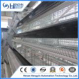 De Kooi van de Kip van de Laag van het Gevogelte van de Apparatuur van de Landbouwbedrijven van de Kip van het gevogelte