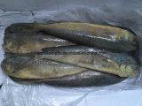 Mahi中国のフリーズされたMahiの魚