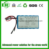 Draagbare Server Rechargeable Li-IonenBattery 12V 15ah BMS Protection