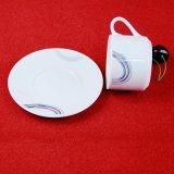Nuovi tazza e piattino di ceramica freschi dell'insieme di pranzo