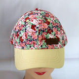 Form-Dame Solar Fan Cap