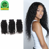 Cabelos Crespos moda grande qualidade sem derramar Desembaraçados 100% virgem de cabelo humano