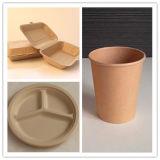 Наружные кольца подшипников, Peper тарелки, чаши для варки, обед коробки и Trays-Paper посуда
