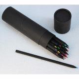 12/24 Backwood bolígrafos, lápices de colores en el tubo de papel