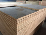 Incombustible HPL Formica de color blanco, madera contrachapada para el mercado de EE.UU.