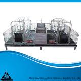 고품질 가축 장비 중국제