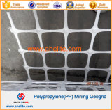 Tweeassige Geogrids Samengestelde Geotextiles van het polypropyleen pp Geocomposites