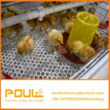 Sistema della strumentazione della gabbia del pollo del pulcino della pollastra della griglia di strato dell'azienda avicola piccolo da
