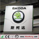 2016 het Ontwerp van het Koele & Nieuwe LEIDENE Auto LEIDENE van het Embleem Embleem van de Auto voor Skoda