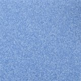 Commercial PVC Dirty Plastic Floor for