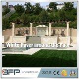Pietra/granito naturali bianchi eleganti per fare fronte della piscina/lastricatore del raggruppamento
