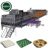 La pulpa de papel reciclado Hghy fabricante de máquinas de bandeja de huevos