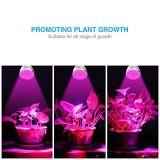 L'ÉPI chaud DEL de ventes se développent léger pour des fleurs