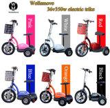 3つの車輪の電気スクーターのZappy Trikeのスクーターの障害がある無効Eスクーター
