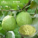100%の自然なGuavaフルーツの粉