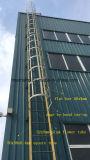 Corrimão de plástico reforçado com fibra de vidro/Escada da gaiola para a torre de resfriamento