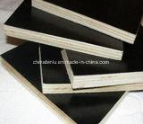 Film de base de feuillus de colle imperméable face utilisé pour la construction de contreplaqué