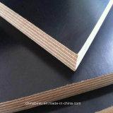 la película del negro de la madera contrachapada de 18m m hizo frente a precio razonable de calidad superior de la madera contrachapada