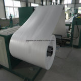 Gx01 ENV Schaumgummi-Maschine PS-Blatt-Extruder-Plastikblatt-Maschine