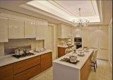 Gabinete de cozinha novo Yb1709215 da mobília da HOME do projeto 2017