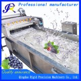 Lavadora del producto de limpieza de discos de la fruta conservada (Rd-QP4000-800)
